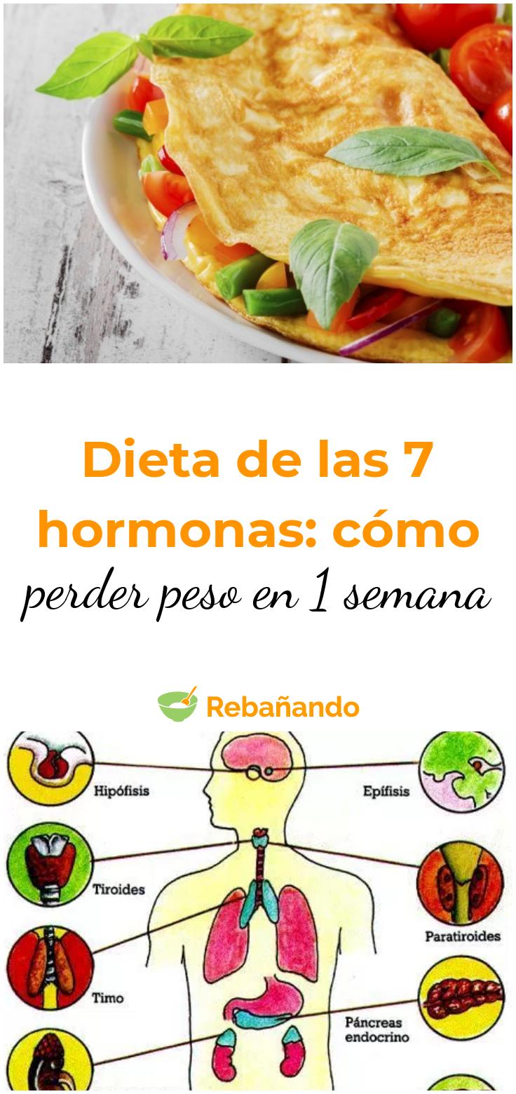 Dieta para regular hormonas