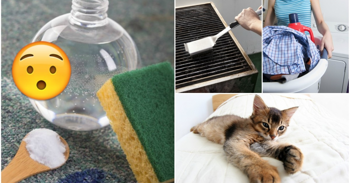 Los mejores trucos para limpiar tu casa con vinagre - Limpiar parquet con vinagre ...